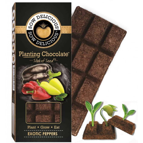 Sow Delicious Planting Chocolate Slab of Seeds - Exotic Peppers