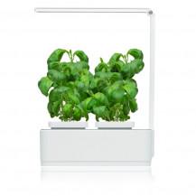 Microgarden Kitchen Micro Smart Garden