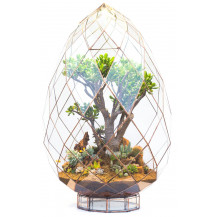 AE Automated Terrarium Briolette - Large, Copper