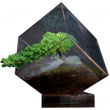 AE Geometric Terrarium Cube - Large, Copper