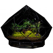 AE Geometric Terrarium Diamond - Large, Black