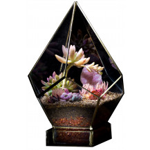 AE Geometric Terrarium Pentagon - Large, Copper