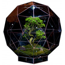 AE Geometric Terrarium Pentakis - Medium, Copper