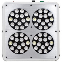 Apollo 4 Full Spectrum LED Grow Light - 180W