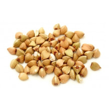 Livingseeds Sprout Seed Pack - Buckwheat Seeds
