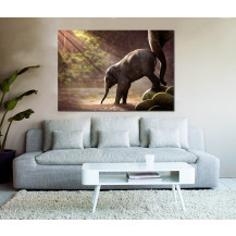 Canvas Prints Big 5 Collection - A0, Baby Elephant
