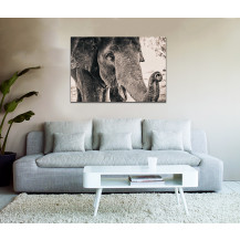 Canvas Prints Big 5 Collection - A1, Elephant 3