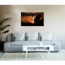 Canvas Prints Big 5 Collection - A2, Elephant 4