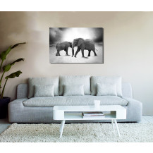 Canvas Prints Big 5 Collection - A2, Elephant 5