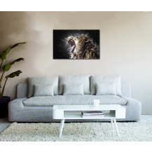 Canvas Prints Big 5 Collection - A2, Lion 2