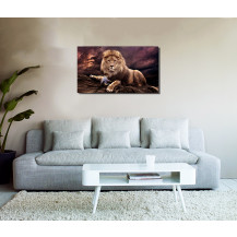 Canvas Prints Big 5 Collection - A2, Lion 4