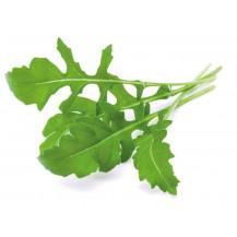 Click and Grow Plant Pods - 3, Arugula