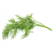 Click and Grow Plant Pods - 3, Dill