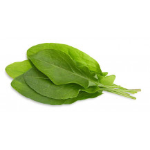 Click and Grow Plant Pods - 3, Green Sorrel