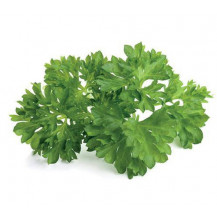 Click and Grow Plant Pods - 3, Parsley
