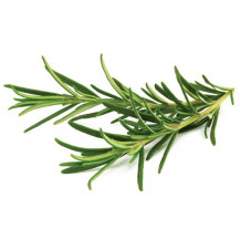Click and Grow Plant Pods - 3, Rosemary