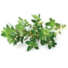 Click and Grow Plant Pods - 3, Thyme