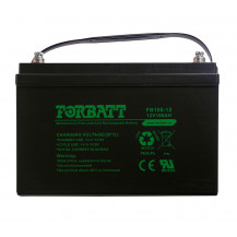 Forbatt AGM Battery - 12V, 100Ah