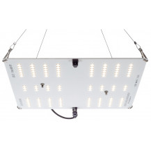 Full Spectrum HLG 65 V2 LED Grow Light - 4000K, 65W, White