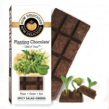 Sow Delicious Planting Chocolate Slab of Seeds - Gourmet Spicy Salad Greens