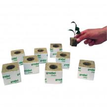 Grodan Delta Rockwool Macro Cubes - 100x100mm - SOLD INDIVIDUALLY