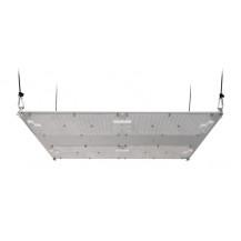 Kingbrite Quantum Board LED Grow Light - 480W, Lm301H, 3500K