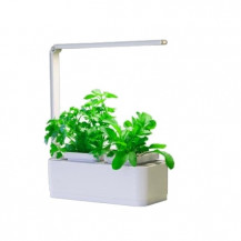 Microgarden Kitchen Micro Smart Garden