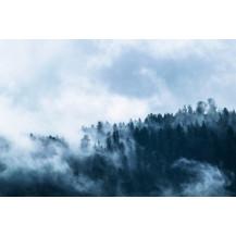 Canvas Prints Landscape - A0, LA010