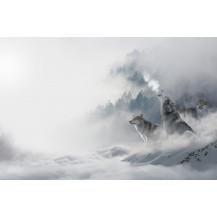 Canvas Prints Landscape - A2, LA221