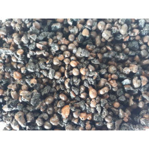 Forest Roots Leca Crushed Clay Pellets -  2-9mm, 20L