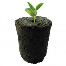 Rootit Round Grow Plugs