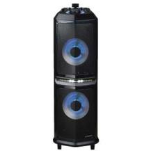 S Digital DJ10 10-inch Speakers