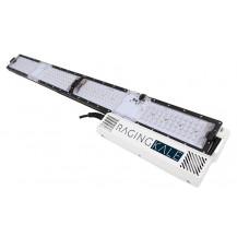 Scynce LED Raging Kale Veg Light - 250 Watt