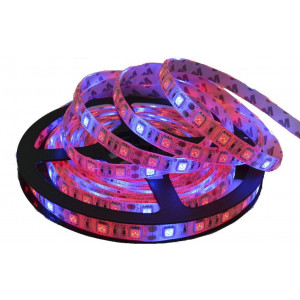 5050/60 Water Resistant 4:1 LED Grow Light Strip - 5m