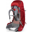 Osprey Ariel 65 AG Women's Backpack - Small Back View