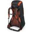 Osprey Exos 48 Backpack - Blaze Black - Back View