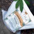 Tetra Botanica Premium Vermicast Compost - 10L