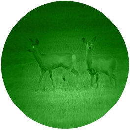 Generation CORE Night Vision image view quality